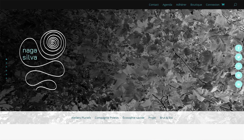 Site web Association Nagasilva